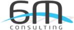 6M Consulting